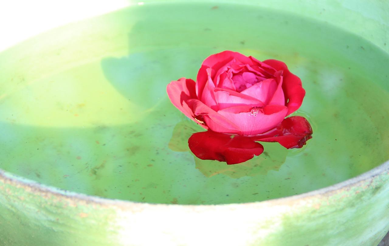 acqua di rose benefici sulla pelle