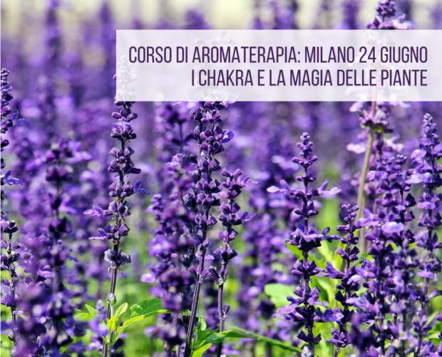 Corso di aromaterapia Milano 24 giugno: i chakra e la magia delle piante