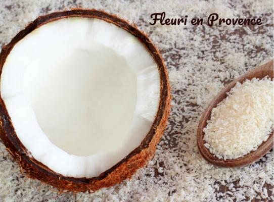 olio di cocco benefici per la pelle