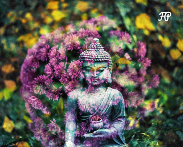 Corso  di aromaterapia Torino 22 ottobre: i chakra e la magia delle piante