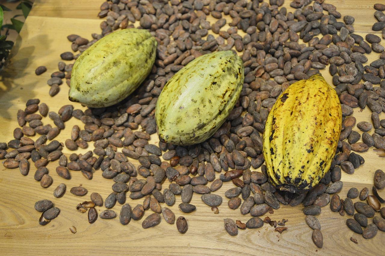 burro di cacao proprietà